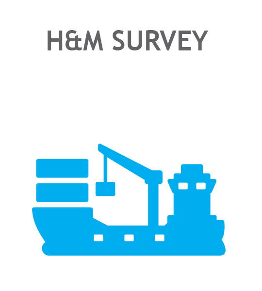 H M Survey Ikon
